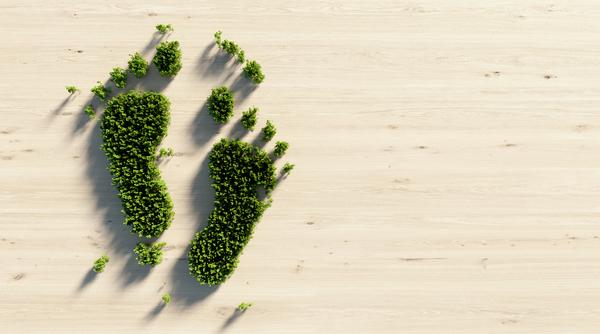 Terminsplanering biologi åk 9 – Digitalt läromedel - Clio